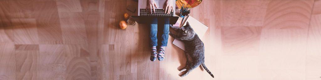 Las compras en línea dominan las alternativas durante la época de cuarentena, permitiéndote encontrar todo lo que tu mascota necesita para su bienestar.